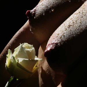 Körperlandschaften erotische Fotos von Fotograf in Düsseldorf