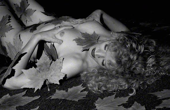 Erotische Fotos von Chats